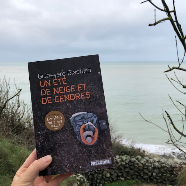 livre Un été de neige et de cendres